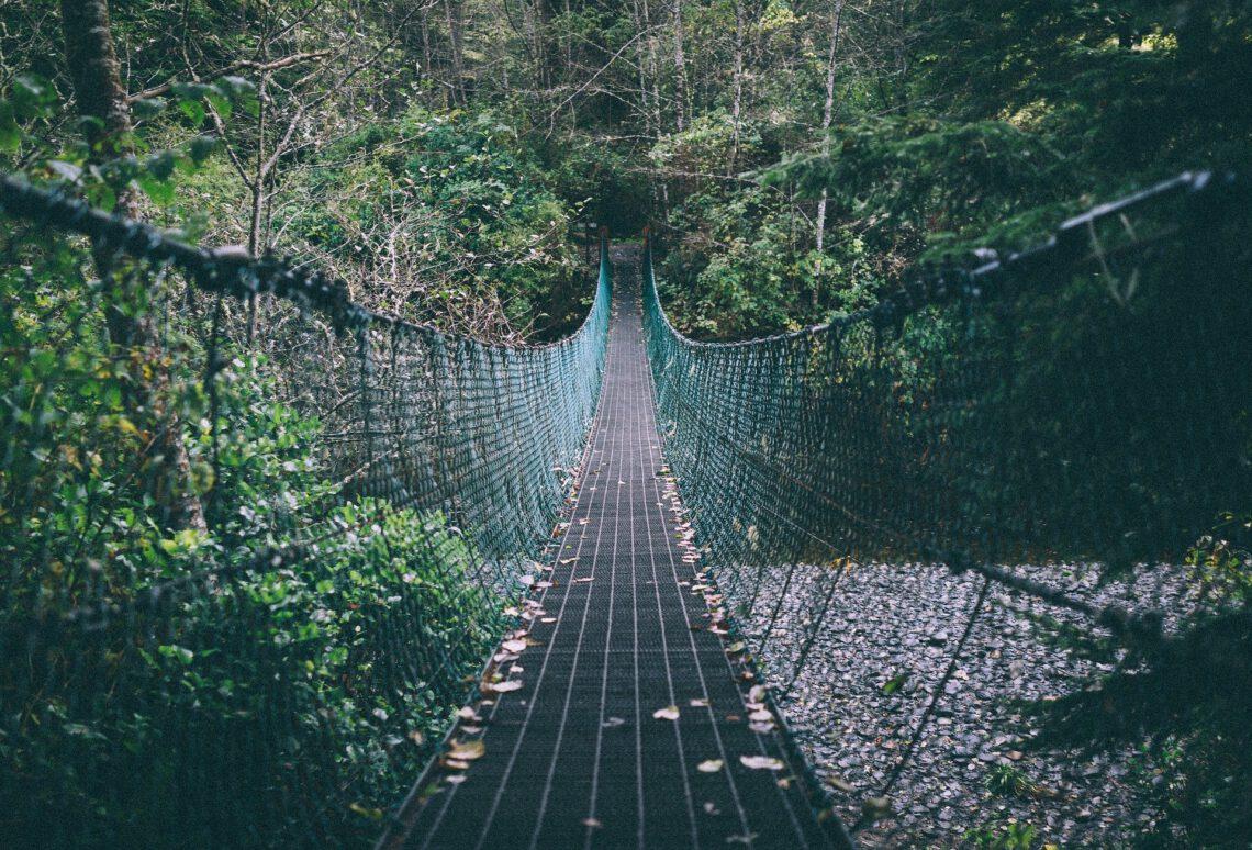 Eine Hängebrücke durch den Wald.
